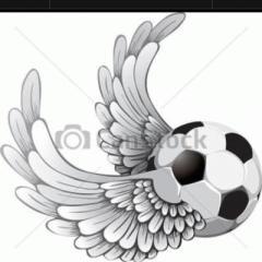 goal_sho