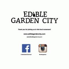NÓNG by Edible Garden City
